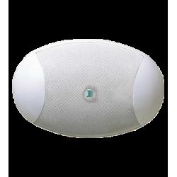 Altavoz superficie EGI C36/6-T